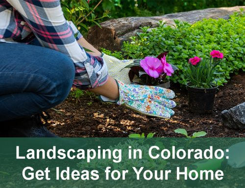 Landscaping Ideas for Your Home in Colorado