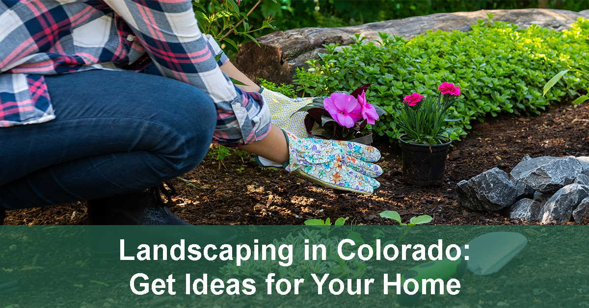 landscaping ideas for Colorado