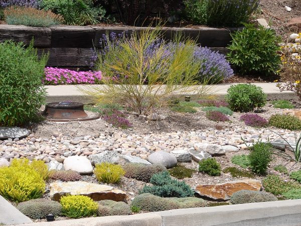 Landscaping Ideas For Your Home In Colorado From Ridgeline Homes Llc