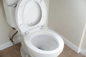 Toilet with lid left open.